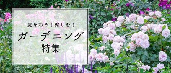 【月毎】庭を彩る!楽しむ!ガーデニング特集